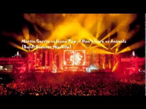 Martin Garrix vs Icona Pop  I Dont Care vs Animals Buldi Summer MashUp