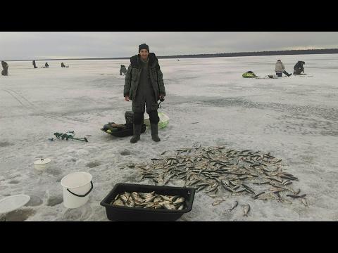 рыбалка в кириково ладожское озеро