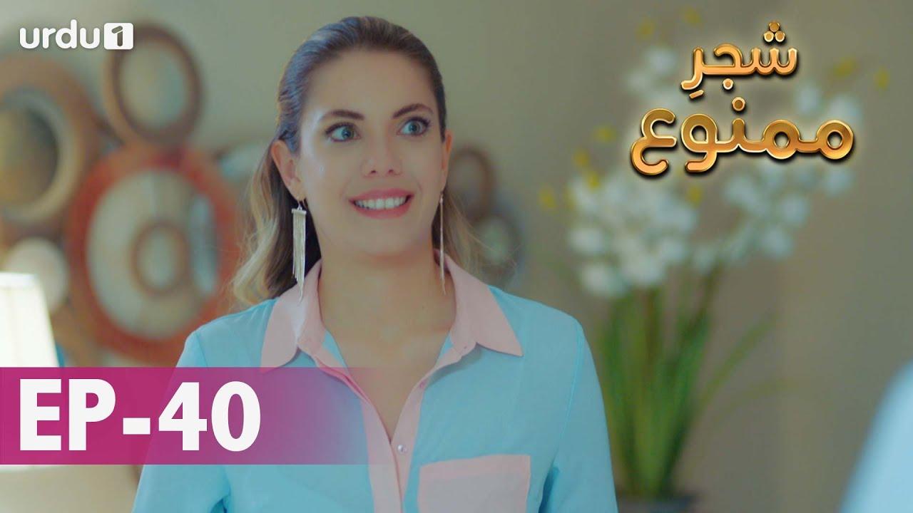 Shajar-e-Mamnu | Episode 40 | Turkish Drama  | Forbidden Fruit | Urdu Dubbing | 03 February 2021