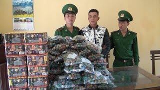 Tin Tức 24h: Bắt pháo lậu trên biên giới tỉnh Gia Lai