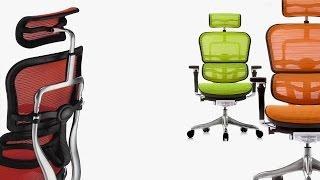 Ergohuman Plus Office Chair