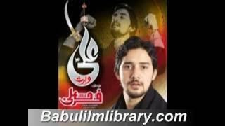 Download Hindi Video Songs - Farhan Ali Waris Nohay 2012