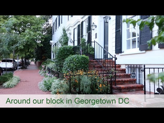 Around our block in Georgetown, Washington, DC