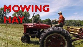Farmall M mowing hay