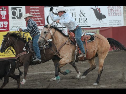 Meeting Wolves & Yellowstone Rodeo - USA Day 10 & 11