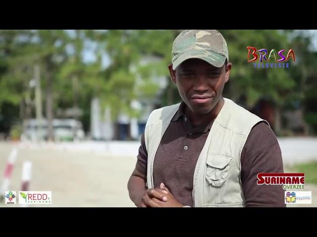 Suriname Overzee: Trots op ons bos deel 4