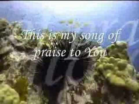 Brian Doerksen   Faithful Father lyrics