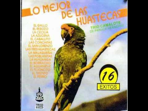 Trio Camalote - El San Lorenzo     (Sólo audio)