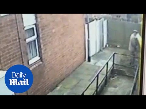 CCTV caught UKIP canvasser urinating on elderly woman's fence - Daily Mail
