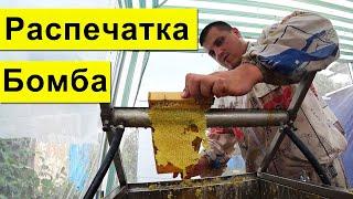 Распечатка Сотов бомба ✅ Откачка меда 2020 🍯