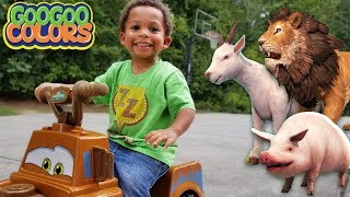 Gaga Baby Plays HIDE N SEEK with ZOO ANIMALS! Learn to Count to 5