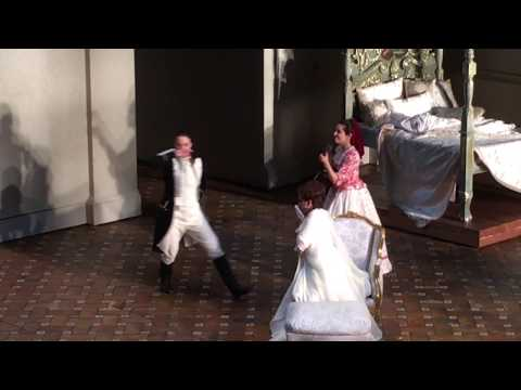 W. A. Mozart - VOI CHE SAPETE - Raffaella Milanesi