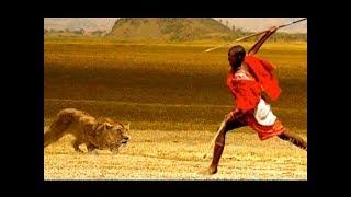 National Geographic Documentary - Lions vs Maasai Warriors - Wildlife Animal