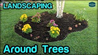 Gambar cover Landscaping / Edging / Mulching Around Trees