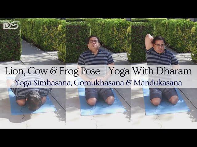 Yoga With Dharam | Yoga Simhasana, Gomukhasana, Mandukasana |  Lion, Cow & Frog Pose | Yipee Yoga
