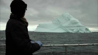 Iceberg and Art, Art, Art