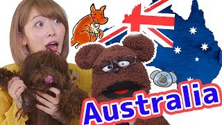 全部おすすめ!スーパーで買えるオーストラリアの定番おみやげお菓子食べてみた!