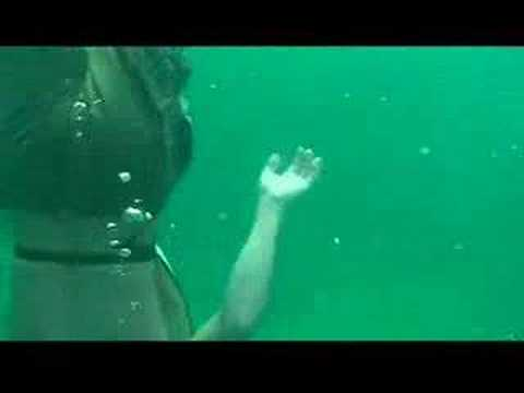 Snorkeling In Hollywood Florida