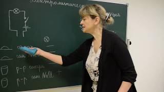 """Урок химии для 8 класса """"Электролитическая диссоциация"""" (учитель Швецова Елена Евгеньевна)"""