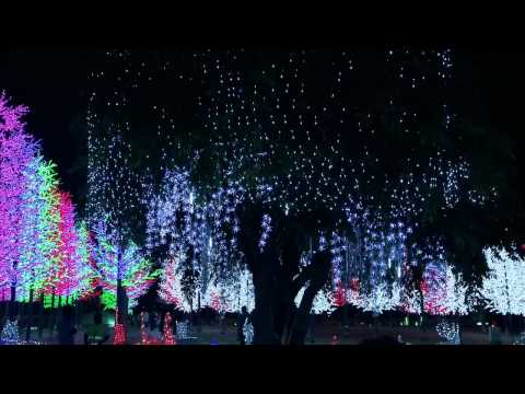 Faizal Tahir - Selamat Malam ( OST Ponti Anak Remaja )