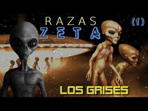 R A Z A S    Z E T A : LOS GRISES - Cap. 1