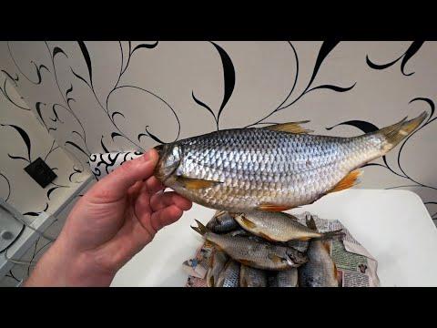 Вяленая Рыба по Дальневосточному. Как ПРАВИЛЬНО Сушить, Солить, Вялить, Хранить Рыбу! Плотва Тарань