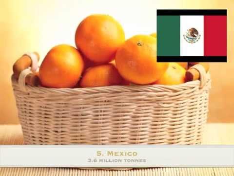 Top Ten Orange producing countries