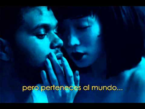 The Weeknd - Belong To The World Subtitulado