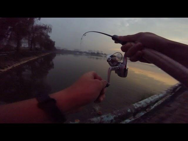 Cần siêu mềm ultra light lọ mọ bắt cá buổi sớm hôm