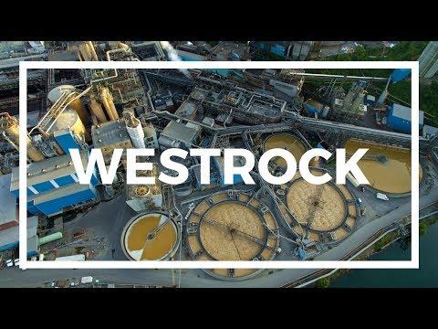 WestRock (MeadWestvaco) by Drone | Covington, Virginia