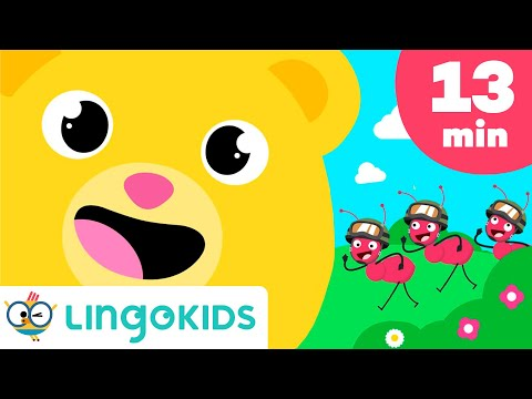 English songs for Kids - Lingokids
