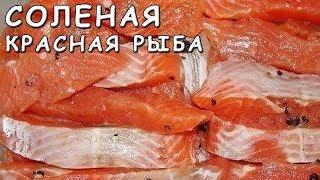 Соленая красная рыба. Рецепт приготовления