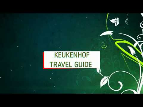 Keukenhof travel guide and some important tips and infos #Vlog 4