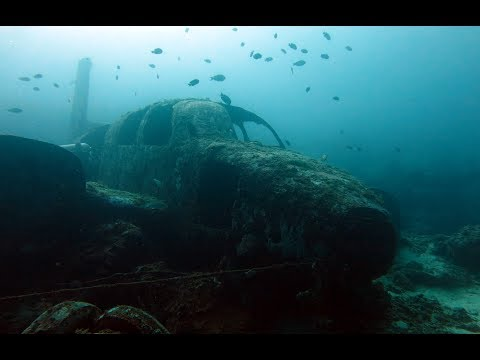 Highlights | Scuba Diving in Cebu | PHILIPPINES