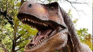 """T-Rex Leaves Dallas Zoo to Catch """"Jurassic World"""""""