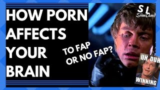 Does Watching Porn Make Your Brain Smaller? - How Porn Affects Your Brain - Why Go No Fap