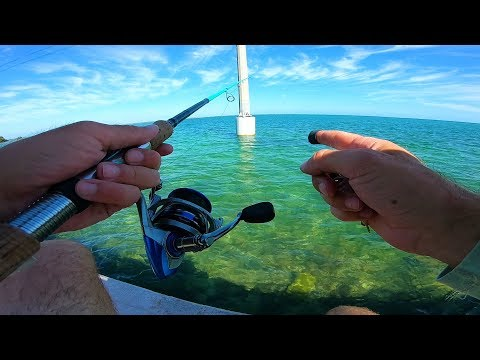 Fishing Ultra Clear Water For What Ever Bites - Florida Keys Adventure Epi 2