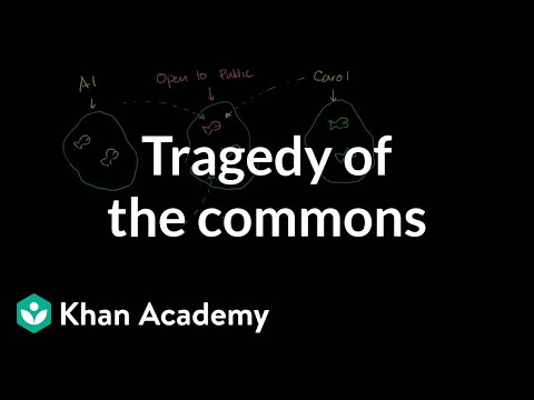 Tragedy of the commons | Consumer and producer surplus | Microeconomics | Khan Academy