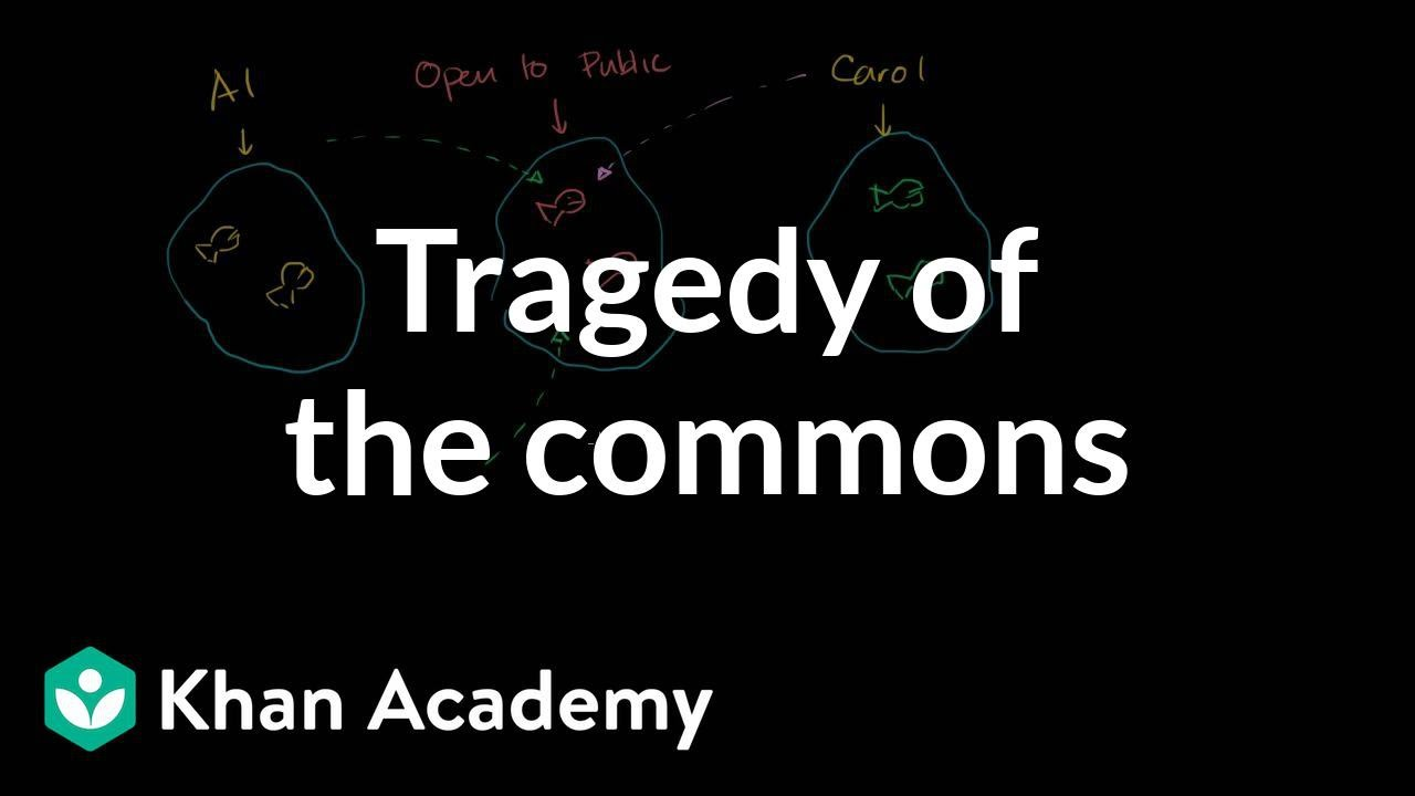 tragedy of the commons consumer and producer surplus  tragedy of the commons consumer and producer surplus microeconomics khan academy