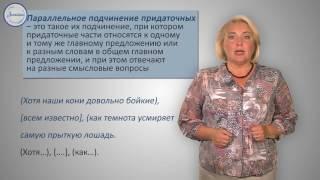 Русский язык. 9 класс. Сложноподчиненные предложения с несколькими придаточными