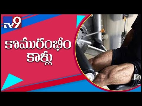 NTR personal trainer Lloyd posts pic of NTR workout – TV9
