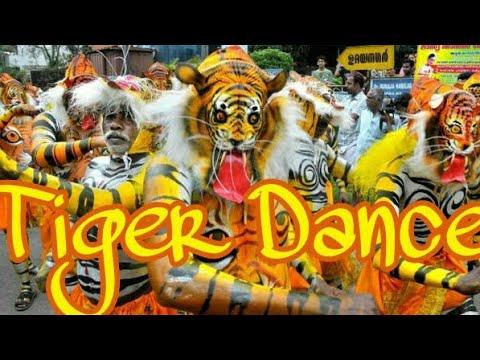 Tiger Dance (2k17) Style Music (Piano Style Remix) - DJ Jatin Remix 2k17 (Barang)