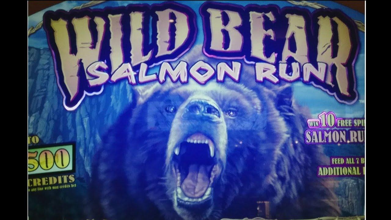 Wild Bear Slot🐻 Salmon Run 60 Free Spins 🐟 💲10cts💲 Youtube