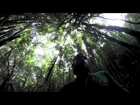 Manoa Falls Hike 7-4-11: Filmed with a GoPro