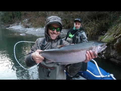 Kalama River Steelhead & Coho