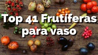 41 Árvores Frutíferas que Podem Plantar em Vasos