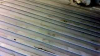 Vanilla Camper Van Build #1 Floor Insulation