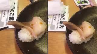 Đoạn clip hot nhất MXH những ngày qua: Món sushi bỗng ...