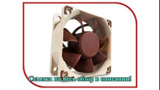 система охлаждения Noctua NF-A6x25 FLX