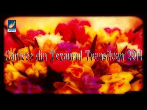 CANTECE DIN TEZAURUL TRANSILVAN vol.III